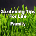 gardening tips for life family